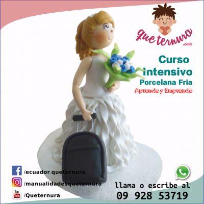 Curso Intensivo 170046 Novia Viaje Porcelana Fría | Taller Práctico queternura.com